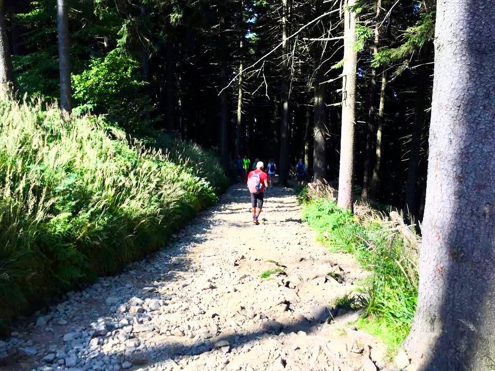 På vandretur op af Lysa Hora bjerget.