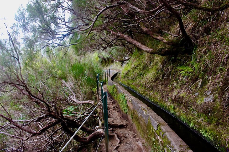 En af de mange levadaer på Madeira.